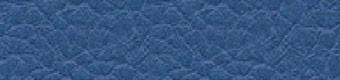 Parotega blue