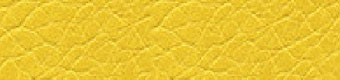 Parotega gelb