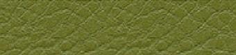 Parotega olive green