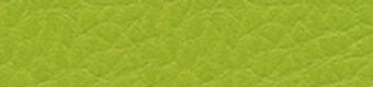 2794 Green