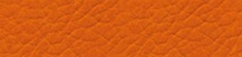 3107 Orange