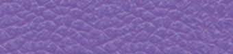 3253 Violett