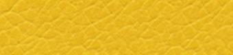 4114 Yellow