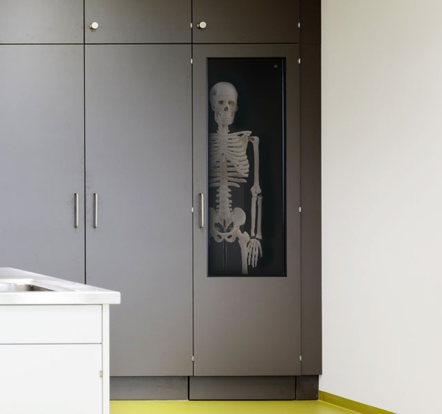 Skeleton-cupboards ARMADIO-SCIENCE